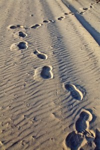 walking on the beach TPOS